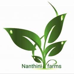 Nanthini farms