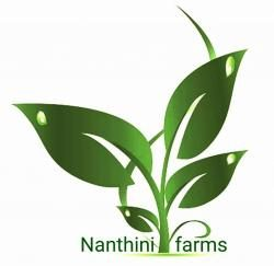 Nanthini farms
