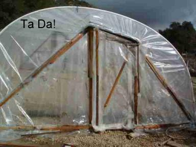 finished_end_of_greenhouse