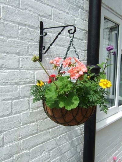 hanging-basket1-400x533