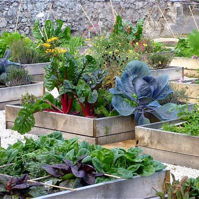 terrace-vegetable-garden-4_mini