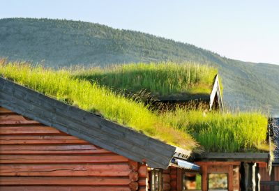 green-roof-400x274