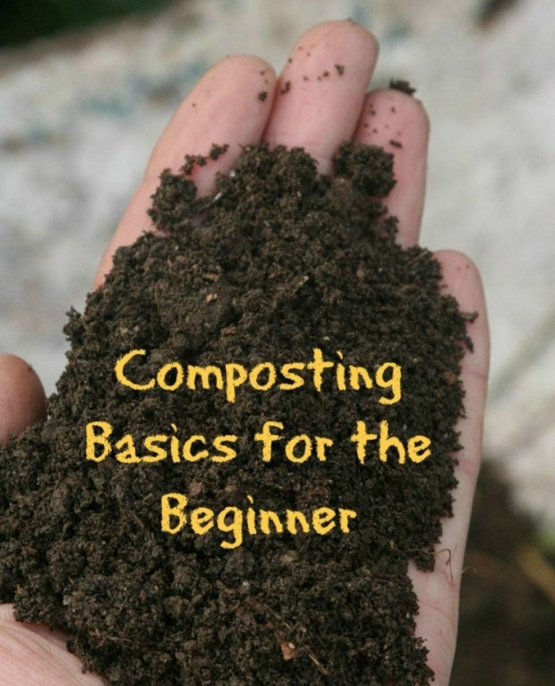 Composting-Basics-for-the-Beginner-How-To-Get-Started-With-Composting-745x1024